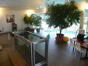 Centre de rééducation fonctionnelle près de Lyon physiothérapie - hydrothérapie pour chiens et chats